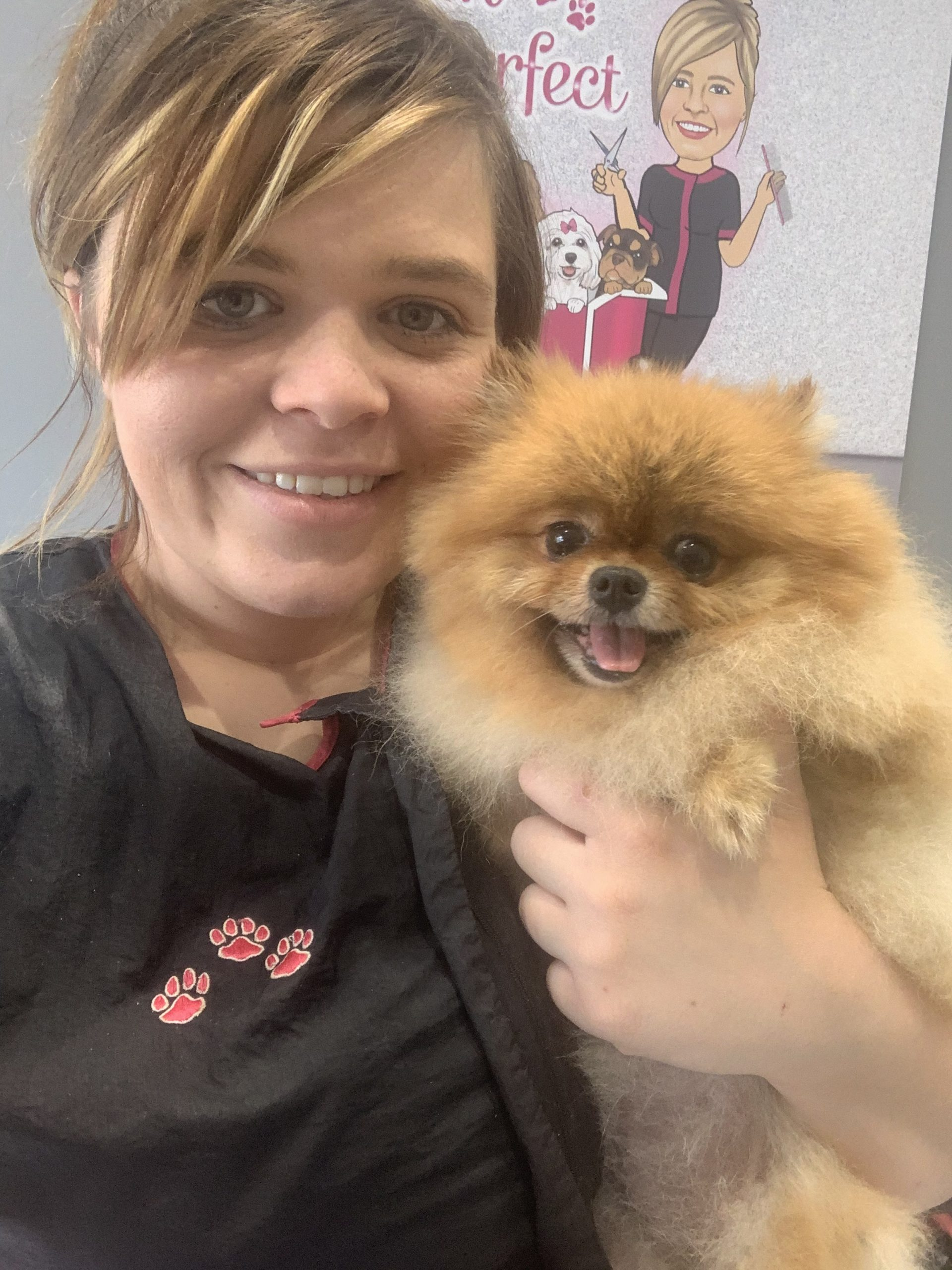 Dog Grooming Norton Canes