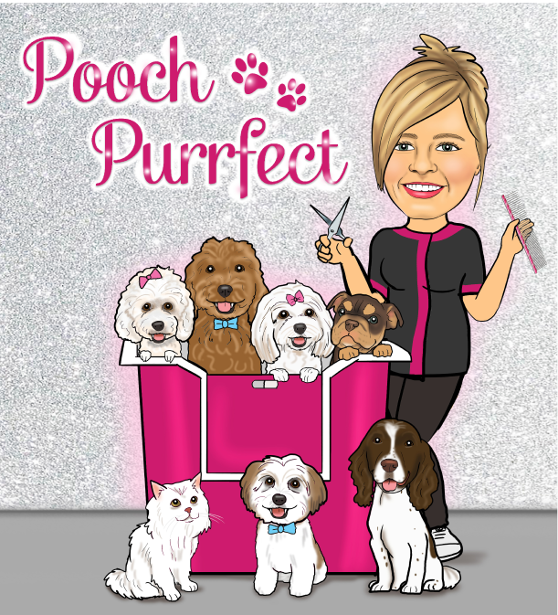 Pooch Purrfect Dog Grooming